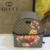 Gucci 246414 秋冬限量Dionysus天竺葵印花肩背包