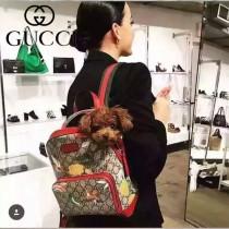 Gucci 429020-01 人氣熱銷時尚新款劉嘉玲同款小號雙肩包