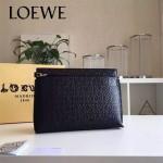 LOEWE 025-05 專櫃時尚新款T-pouch系列原版小牛皮紡織內襯個性手包