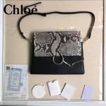 CHLOE 017-02 時尚爆款高圓圓同款Faye系列原版皮單肩斜背包