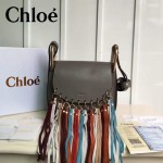 CHLOE 016-02 潮流時尚新款Hudson系列原版平滑小牛皮配磨砂內裡流蘇包