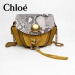 CHLOE 63026-03 潮流時尚新款原版皮配中世紀復古銅鏈相機包