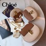 CHLOE 019-16 時尚經典款女士裸粉色原版皮小號鏈條小豬包