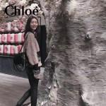 CHLOE 63062-01 潮流時尚新款faye系列原版皮小號單背雙肩包
