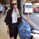 Goyard-12-04 戈雅潮流時尚新款可以私人印字個性旅行袋