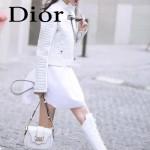 DIOR-003-2 早春最新款D Fence白色原版皮大小號單肩斜挎包
