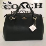 COACH-36637 原單經典款頭層牛皮顆粒紋原版YKK五金雙拉鏈中號手包