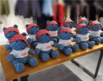 壹個可萌可賤海盜熊 今年zui火爆的玩偶熊