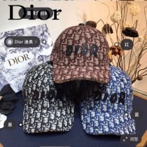 Dior迪奧,專櫃原單 鴨舌帽,金線小蜜蜂