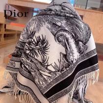 DIOR 原單最新元素大披肩蓋毯毛毯