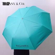 Tiffany蒂芙尼經典自動傘遮陽傘
