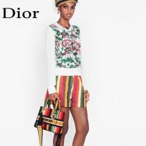 Dior 迪奧原單新款Lady D-Lite 五格刺繡彩虹條紋戴妃包